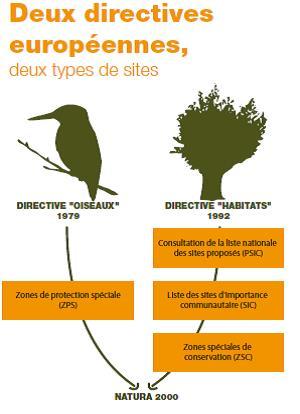 Deux directives européennes.docx